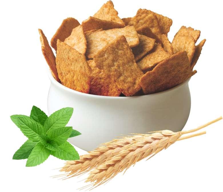 Ritebite Protein Chips Launched By Naturell News Mumbai Mallsmarket Com